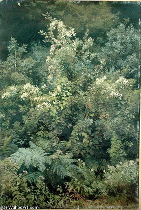 Hops And Ferns In Woodland by Valentin Ruths (1825-1905, Germany)