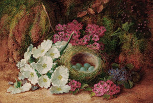Vincent Clare - Blossom And A Bird's Nest With Eggs, On A Mossy Bank