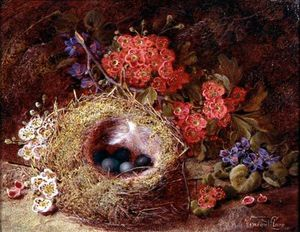 Vincent Clare - Still Life Of A Bird's Nest And Blossom
