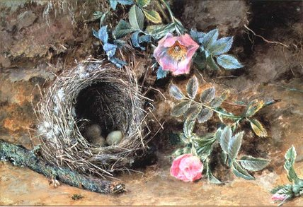 Order Reproductions | Wild Roses And Birds` Nests by William Henry Hunt (1827-1910, United Kingdom) | WahooArt.com