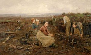 William Stewart Macgeorge - A Galloway Peat Moss