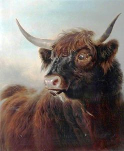 William Watson - A Highland Bull