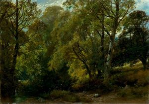 James Duffield Harding - A Shady Nook