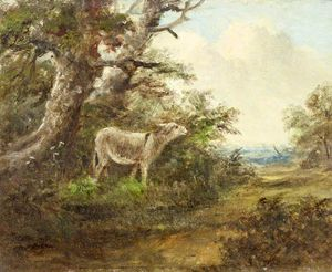 James Stark - A Donkey In A Wood