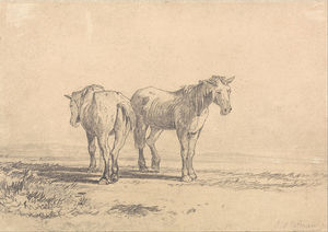 John Sell Cotman - Two Old Horses Standing In A Field