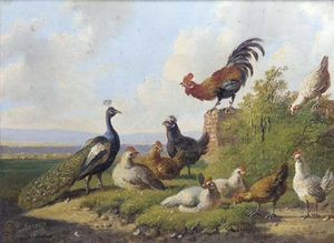 Albertus Verhoesen - A Peacock And Poultry In A Sunny Meadow