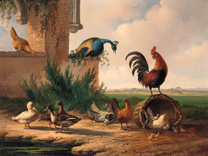 Albertus Verhoesen - Peacock, Rooster, Chickens And Ducks By A Ruin