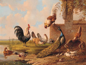 Albertus Verhoesen - Peacock, Roosters, Chickens And Ducks By A Pond And A Ruin