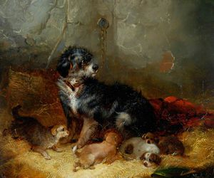 George Armfield (Smith) - Dog With Puppies