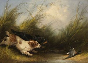 George Armfield (Smith) - Dogs And Wild Duck
