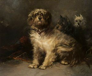 George Armfield (Smith) - Study Of Dogs