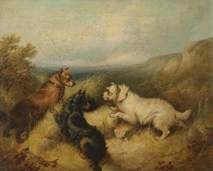 George Armfield (Smith) - Three Dogs