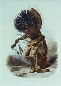 Karl Bodmer - Moennitarri Warrior In The Costume Of The Dog Danse -