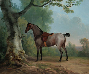Sawrey Gilpin - A Saddled Strawberry Roan Hunter, Tethered To A Tree, In A Landscape