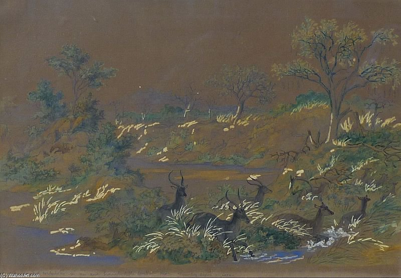 Herd Of Antelope by Thomas Baines (1820-1875, United Kingdom)