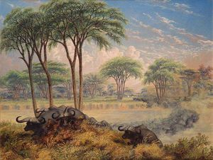 Thomas Baines - Herd Of Buffalo Chased Across The Macloutsie River