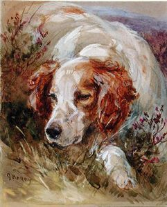 Order Famous Paintings Reproductions : A Spaniel by James Hardy Junior (1832-1889) | WahooArt.com