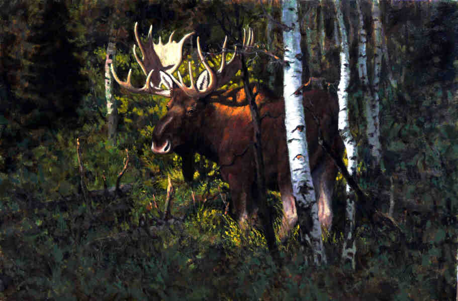 Moose by John Jones (1946-1658) | Oil Painting | WahooArt.com