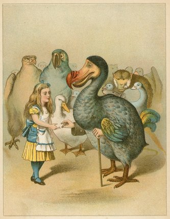 The Dodo Solemnly Presented The Thimble From Alice's by John Tenniel (1820-1914, United Kingdom)