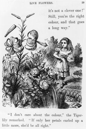 Tiger Lily - by John Tenniel (1820-1914, United Kingdom)