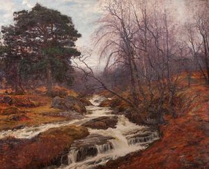 Alexander Brownlie Docharty - Caledonian Forest