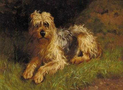 Order Famous Paintings Reproductions : Soft Coated Wheaten Terrier by Alfred Duke (1863-1905, United Kingdom) | WahooArt.com