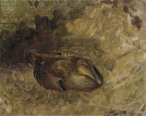 Bruno Andreas Liljefors - Study Of A Wild Duck