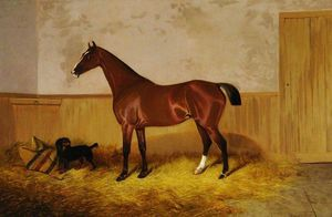 Colin Graeme Roe - Study Of A Horse