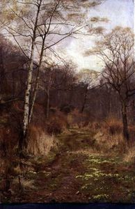 Edward Wilkins Waite - A Woodland Path In Spring