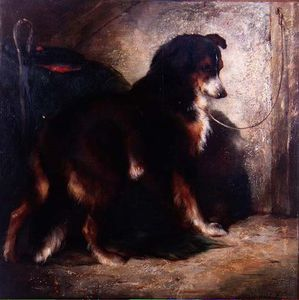 Order Paintings Reproductions | The Shepherd`s Collie by Edwin Douglas (1848-1914, United Kingdom) | WahooArt.com