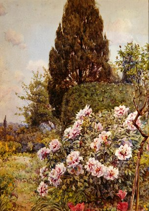 Peonies by Ernest Arthur Rowe (1863-1922, United Kingdom)