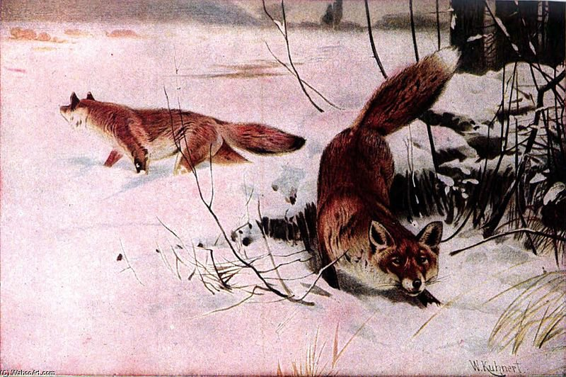 Drawing Of Two Red Foxes In A Snowy Field by Friedrich Wilhelm Kuhnert (1865-1926, Poland) | Oil Painting | WahooArt.com