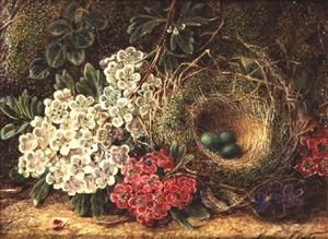 George Clare - Still Life With Bird's Nest