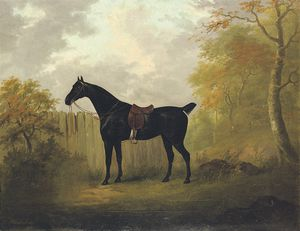 John Nost Sartorius - A Saddled Bay Hunter By A Fence, In A Wooded Landscape