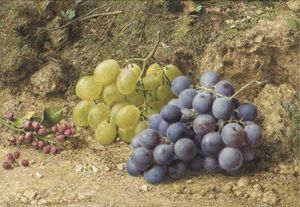William Henry Hunt - Still-life With White And Black Grapes And Redcurrents