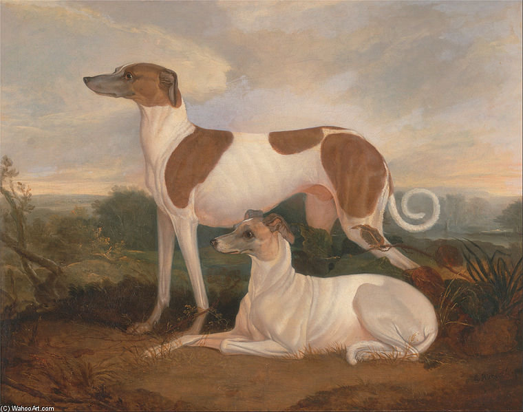 Order Reproductions | Two Greyhounds In A Landscape by Charles Hancock (1802-1827, New Zealand) | WahooArt.com