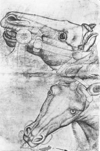Pisanello - Study Of Horse Heads. Pen On Paper. 29 X 19 Cm. Louvre Museum, Paris
