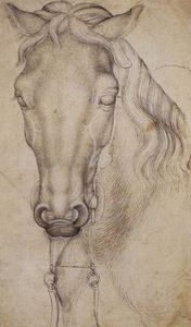 Pisanello - Study Of The Head Of A Horse. Pen. 276 X 197 Mm. Louvre Museum, Paris
