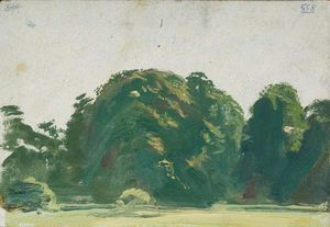 Alfred James Munnings - Study Of Trees -