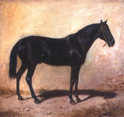 Horse by Jozef Brandt (1841-1915) | Art Reproduction | WahooArt.com