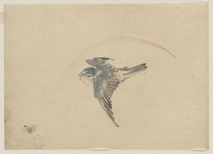 Katsushika Hokusai - A Bird Flying To The Left, Seen From Above