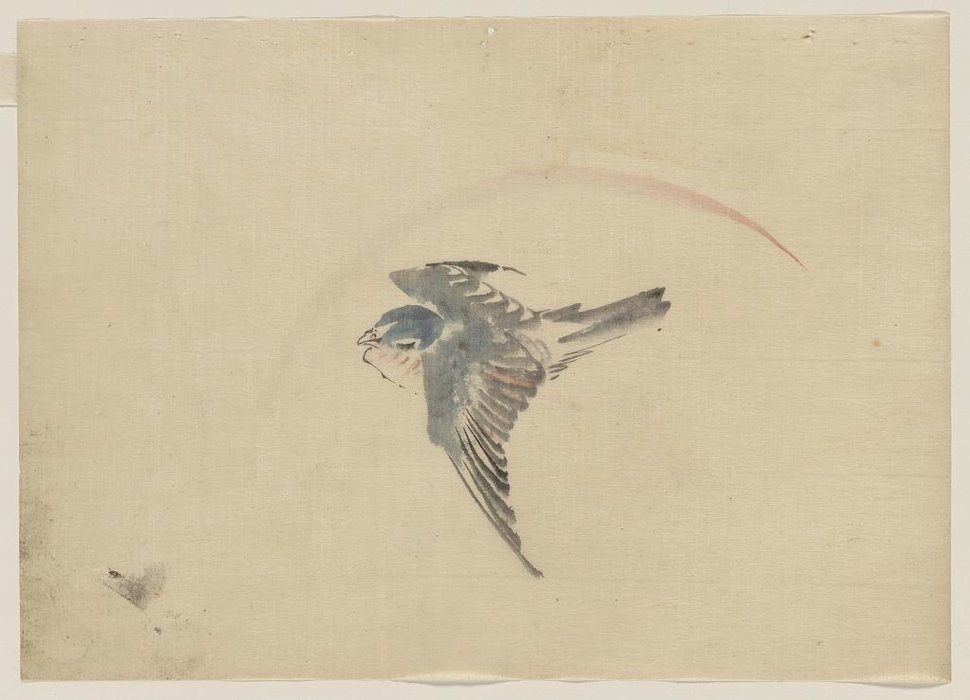 A Bird Flying To The Left, Seen From Above by Katsushika Hokusai (1760-1849, Japan) | Famous Paintings Reproductions | WahooArt.com