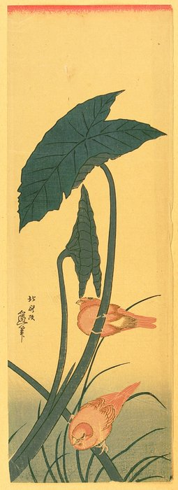 Bird And Plant by Katsushika Hokusai (1760-1849, Japan) | Oil Painting | WahooArt.com