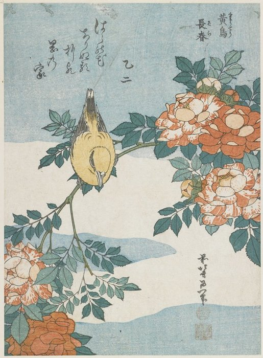 Black-naped Oriole And China Rose by Katsushika Hokusai (1760-1849, Japan)