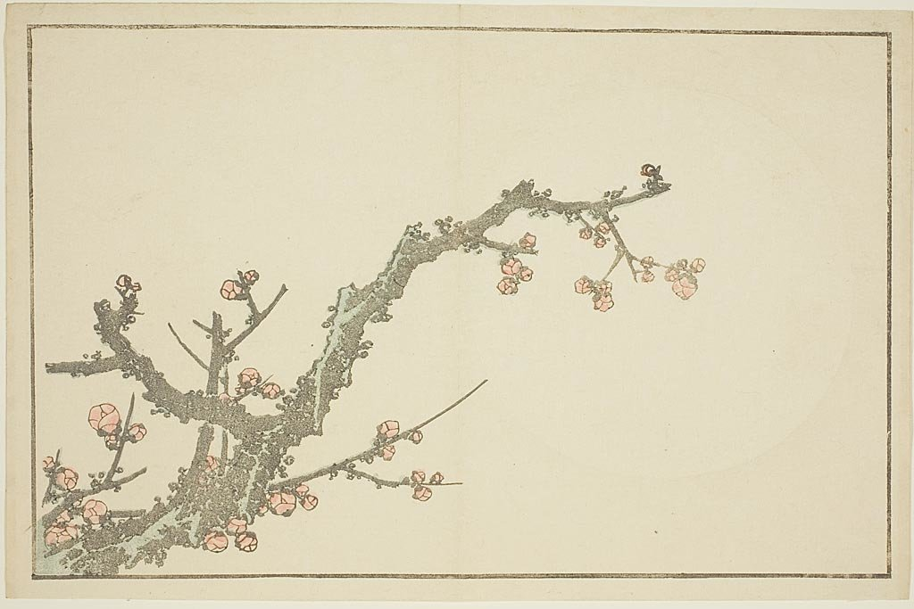 Blooming Plum Tree by Katsushika Hokusai (1760-1849, Japan)