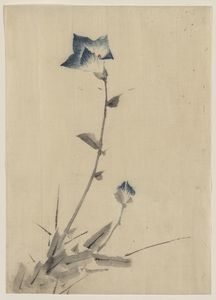 Katsushika Hokusai - Blue Flower Blossom And Bud At The End Of A Stalk