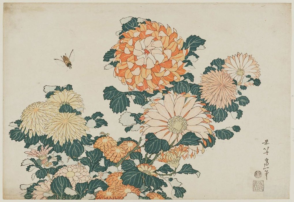Chrysanthemums And Horsefly by Katsushika Hokusai (1760-1849, Japan)
