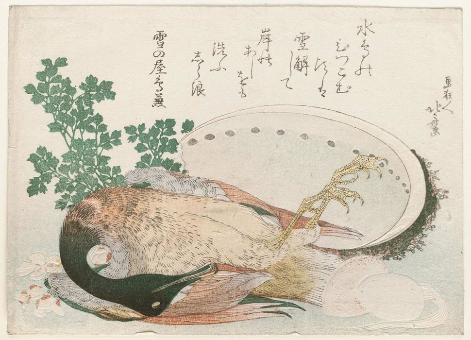 Dead Mallard, Abalone Shell, And Stew Ingredients by Katsushika Hokusai (1760-1849, Japan)
