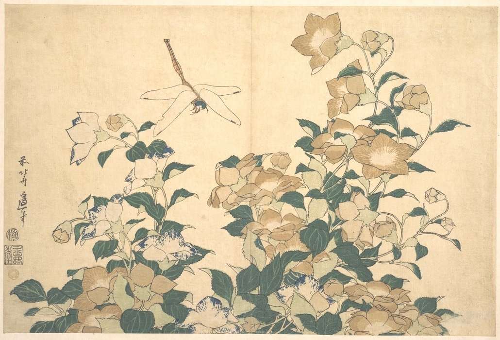 Dragonfly And Bellflower by Katsushika Hokusai (1760-1849, Japan) | Famous Paintings Reproductions | WahooArt.com
