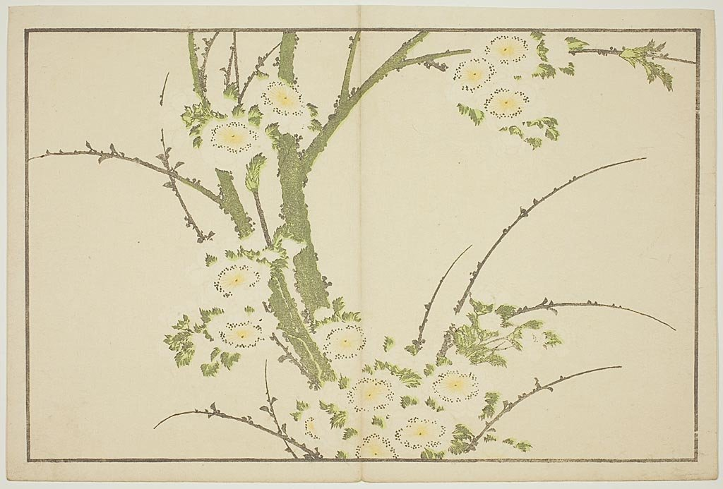 Flowers, From The Picture Book Of Realistic Paintings Of Hokusai by Katsushika Hokusai (1760-1849, Japan)